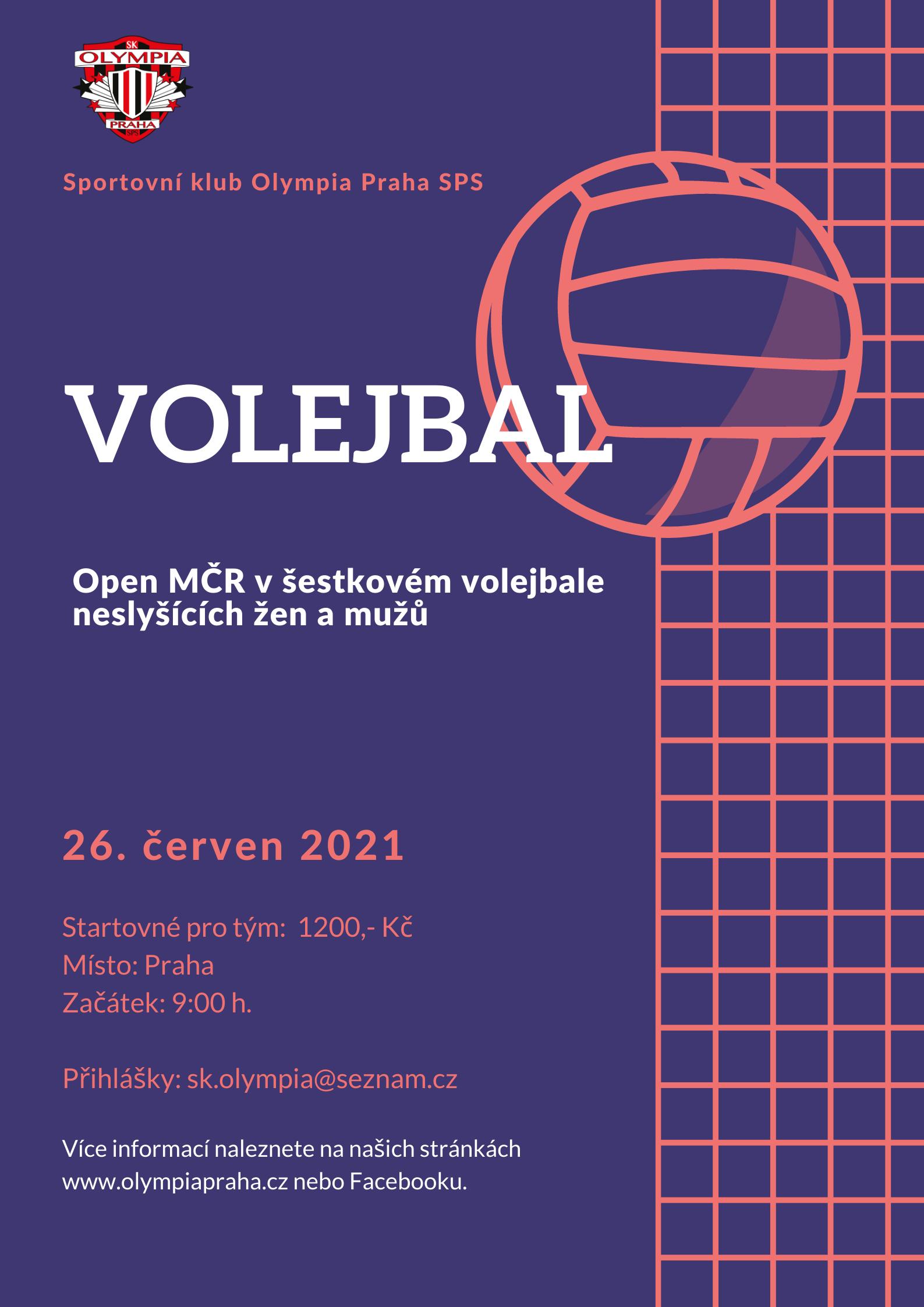mezinárodní volejbal